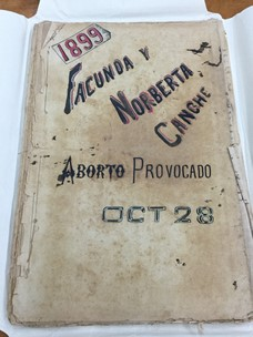 """Cover of """"The Intentional Abortion"""" from 1899, an example of a document dealing with Mexican abortion."""