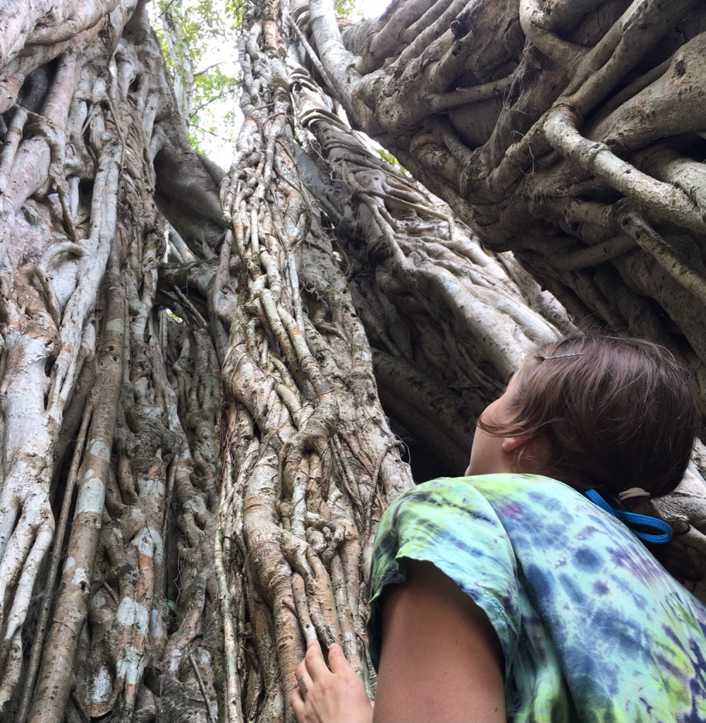 A white woman gazes up at a yew tree.